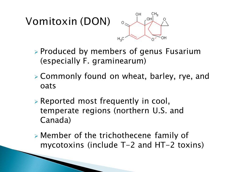  Produced by members of genus Fusarium (especially F.
