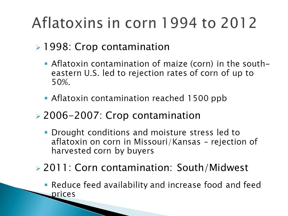  1998: Crop contamination  Aflatoxin contamination of maize (corn) in the south- eastern U.S.