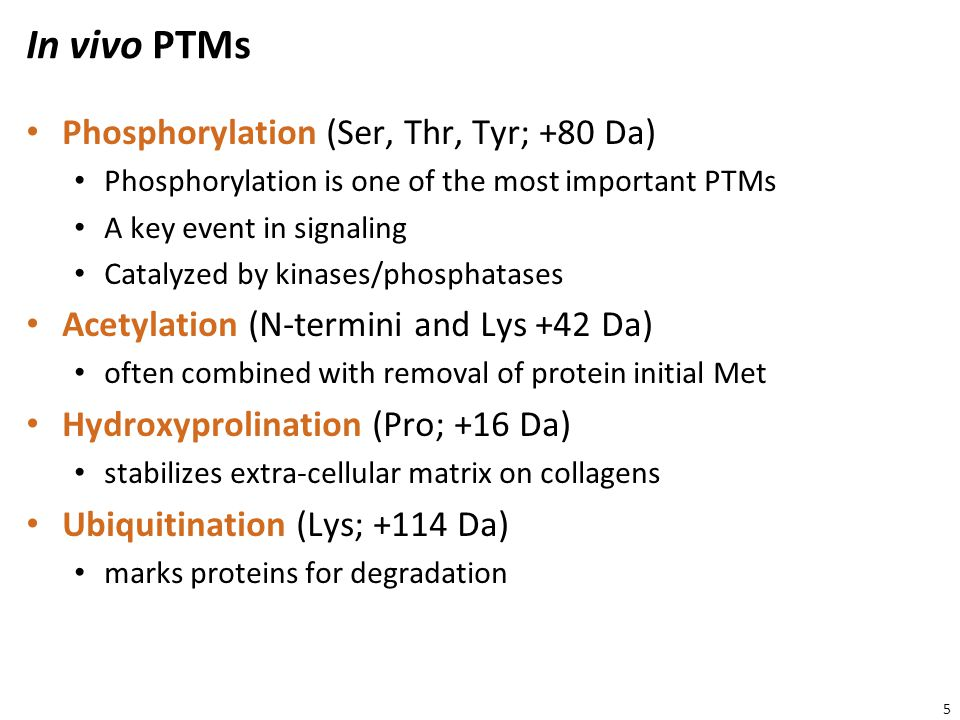 Phosphorylation – Example http://www.cellsignal.com/reference/pathway/pdfs/MAPK_Cascades.pdf 6