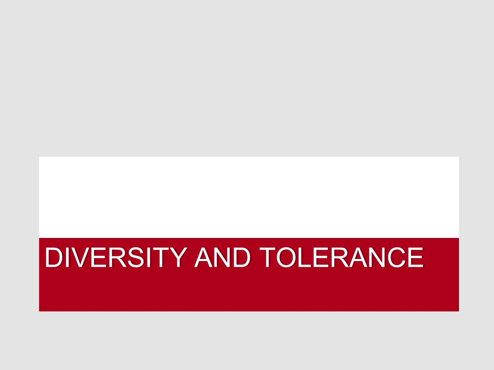 DIVERSITY AND TOLERANCEDIVERSITY AND TOLERANCE