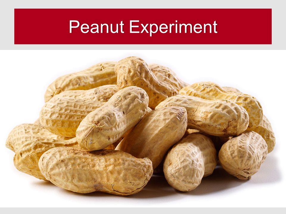 Peanut ExperimentPeanut Experiment