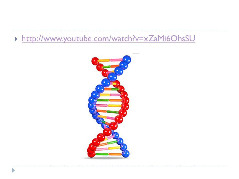  http://www.youtube.com/watch v=xZaMi6OhsSU http://www.youtube.com/watch v=xZaMi6OhsSU