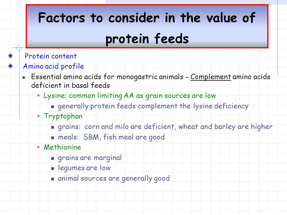 Factors to consider in the value of protein feeds Protein content Amino acid profile Essential amino acids for monogastric animals - Complement amino acids deficient in basal feeds  Lysine: common limiting AA as grain sources are low generally protein feeds complement the lysine deficiency  Tryptophan grains: corn and milo are deficient, wheat and barley are higher meals: SBM, fish meal are good  Methionine grains are marginal legumes are low animal sources are generally good