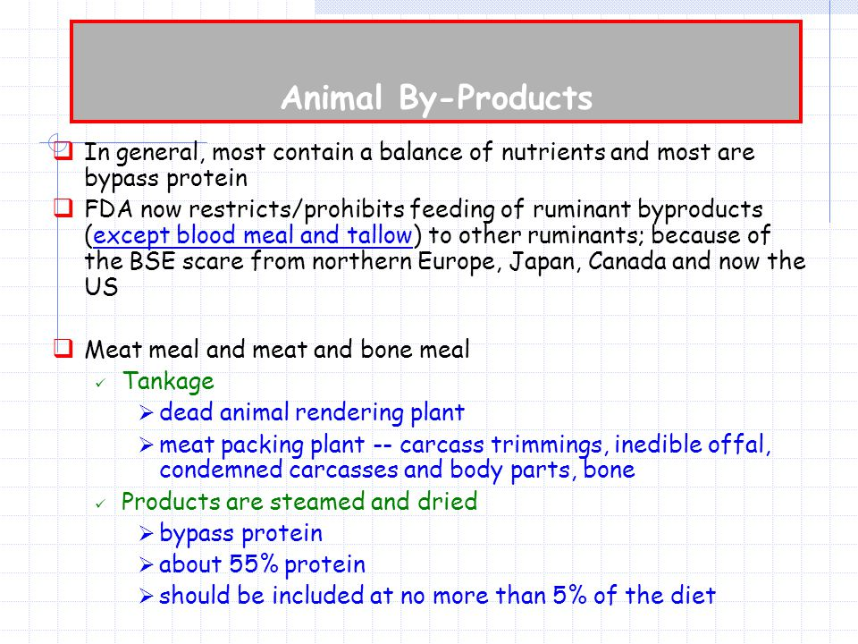  In general, most contain a balance of nutrients and most are bypass protein  FDA now restricts/prohibits feeding of ruminant byproducts (except blood meal and tallow) to other ruminants; because of the BSE scare from northern Europe, Japan, Canada and now the US  Meat meal and meat and bone meal Tankage  dead animal rendering plant  meat packing plant -- carcass trimmings, inedible offal, condemned carcasses and body parts, bone Products are steamed and dried  bypass protein  about 55% protein  should be included at no more than 5% of the diet
