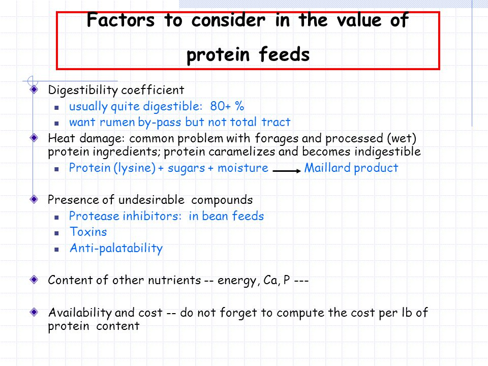 Factors to consider in the value of protein feeds Digestibility coefficient usually quite digestible: 80+ % want rumen by-pass but not total tract Heat damage: common problem with forages and processed (wet) protein ingredients; protein caramelizes and becomes indigestible Protein (lysine) + sugars + moisture Maillard product Presence of undesirable compounds Protease inhibitors: in bean feeds Toxins Anti-palatability Content of other nutrients -- energy, Ca, P --- Availability and cost -- do not forget to compute the cost per lb of protein content