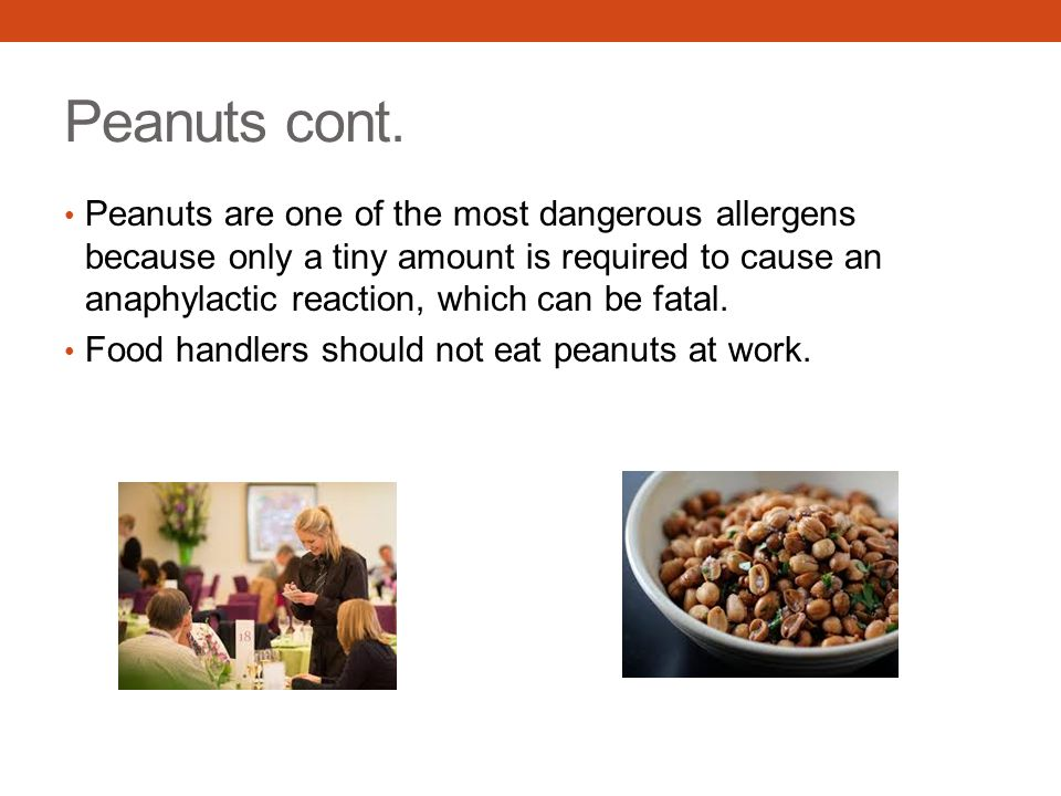 Peanuts cont. Peanuts are one of the most dangerous allergens because only a tiny amount is required to cause an anaphylactic reaction, which can be f