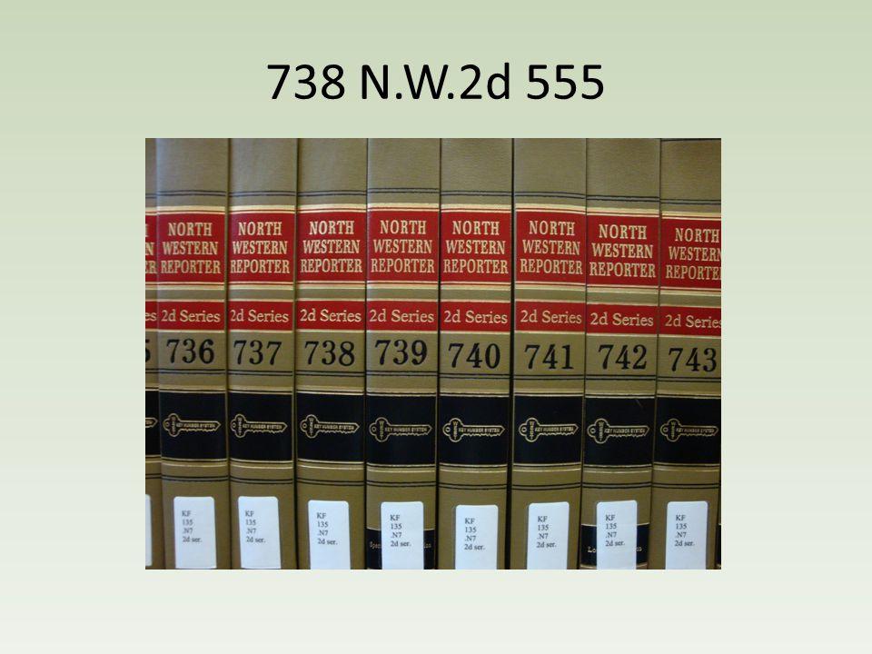 738 N.W.2d 555