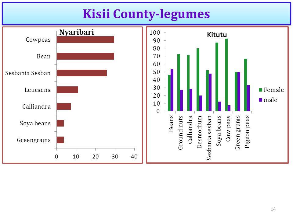 Kisii County-legumes 14