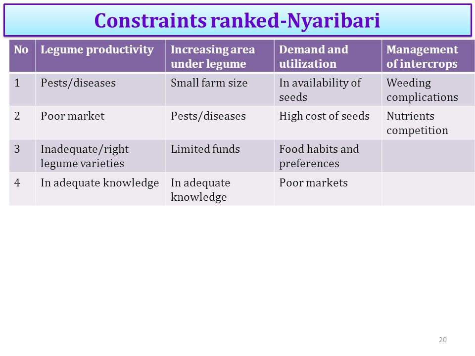 Constraints ranked-Nyaribari NoLegume productivityIncreasing area under legume Demand and utilization Management of intercrops 1Pests/diseasesSmall farm sizeIn availability of seeds Weeding complications 2Poor marketPests/diseasesHigh cost of seedsNutrients competition 3Inadequate/right legume varieties Limited fundsFood habits and preferences 4In adequate knowledge Poor markets 20
