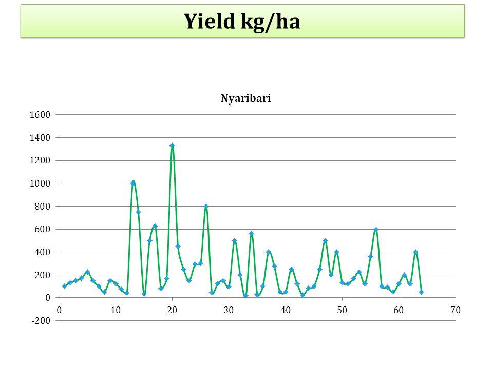 Yield kg/ha