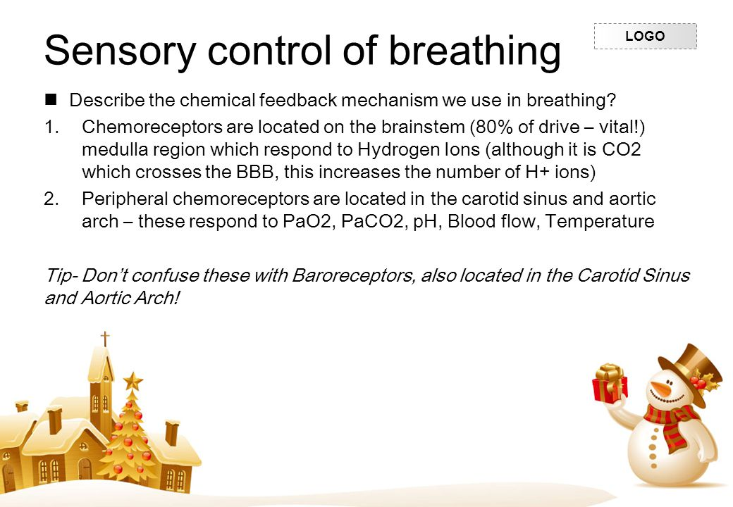 LOGO Sensory control of breathing Describe the chemical feedback mechanism we use in breathing? 1.Chemoreceptors are located on the brainstem (80% of