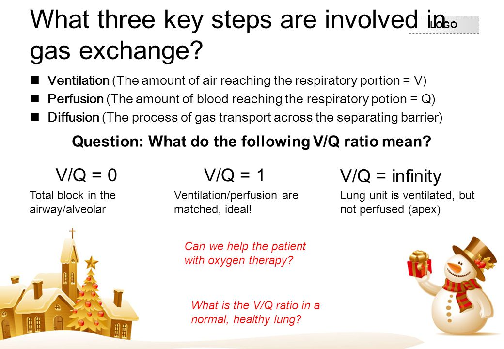 LOGO What three key steps are involved in gas exchange? Ventilation (The amount of air reaching the respiratory portion = V) Perfusion (The amount of