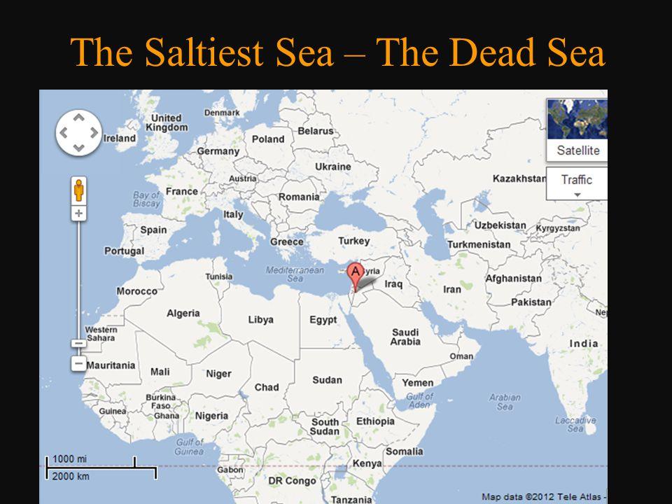 The Saltiest Sea – The Dead Sea