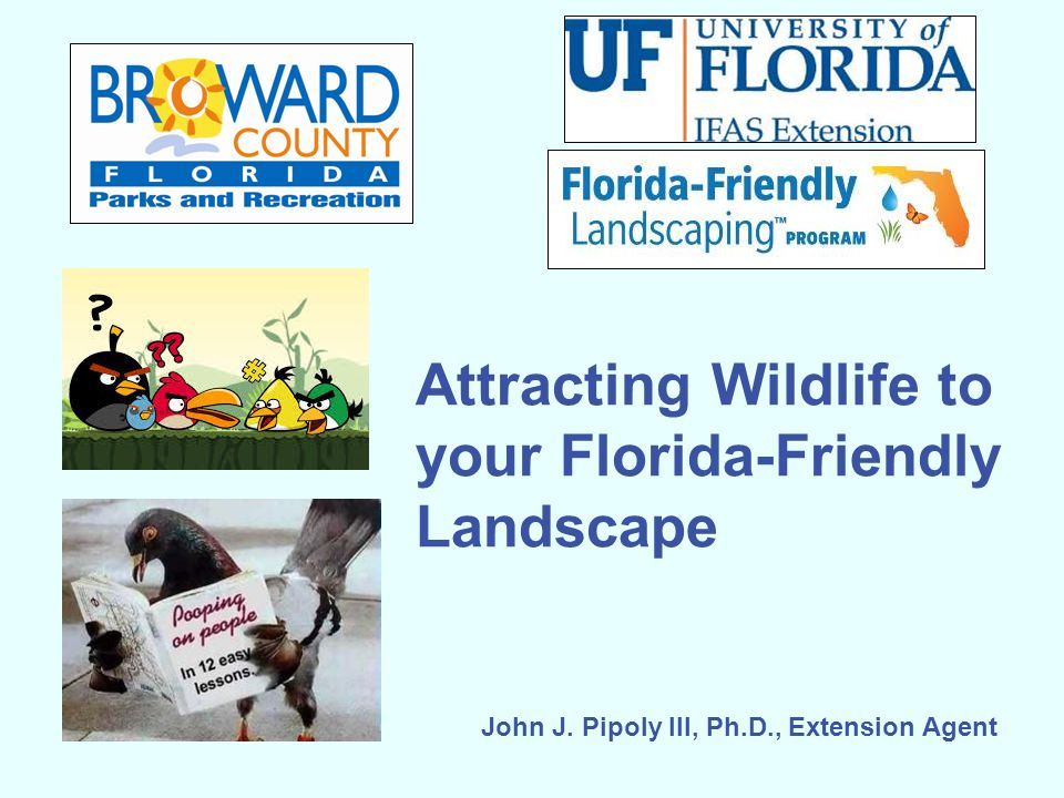 Attracting Wildlife to your Florida-Friendly Landscape John J. Pipoly III, Ph.D., Extension Agent