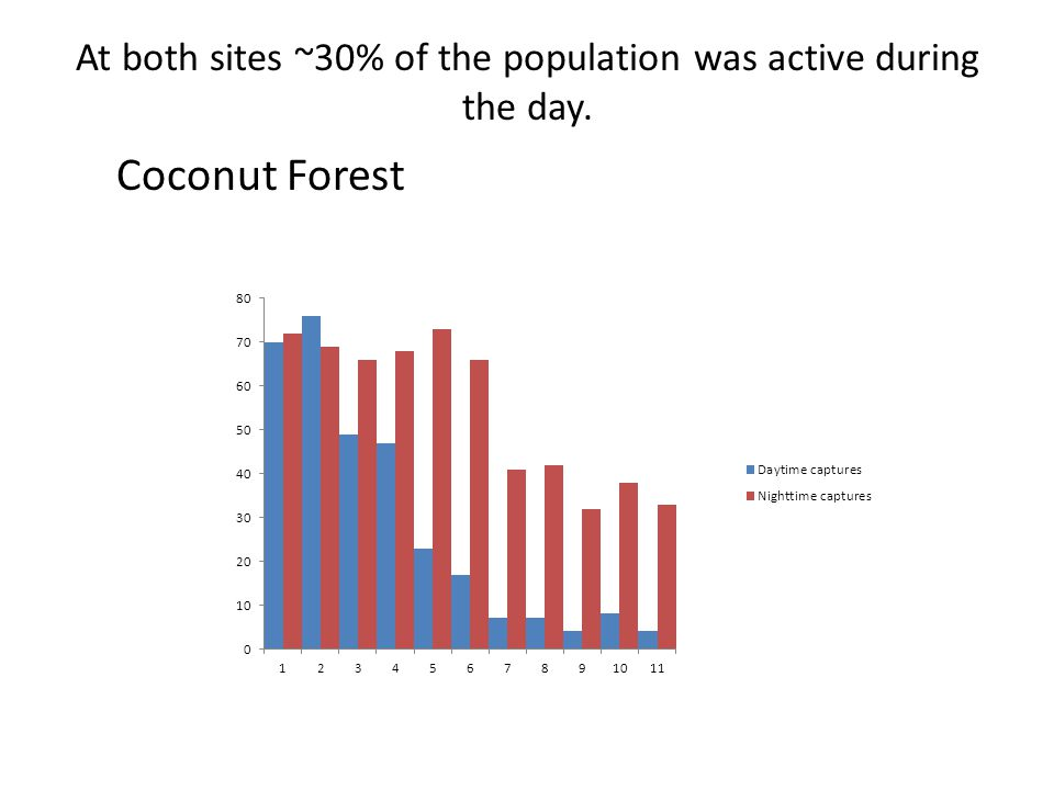 At both sites ~30% of the population was active during the day. Coconut Forest