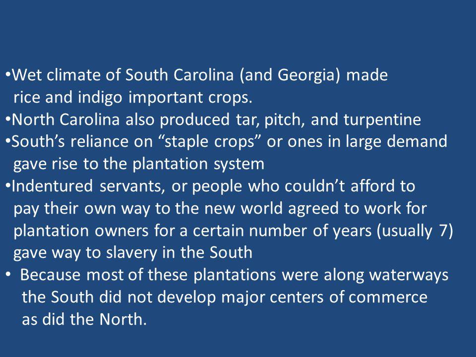 Wet climate of South Carolina (and Georgia) made rice and indigo important crops.