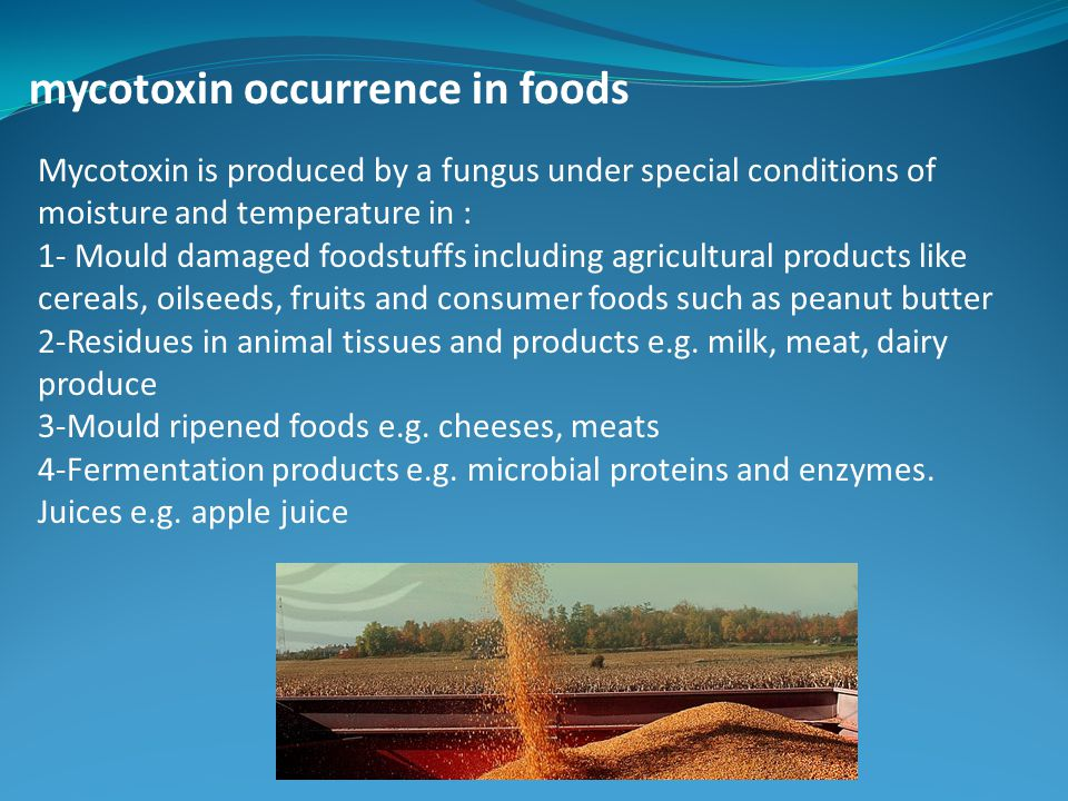 mycotoxin occurrence in foods Mycotoxin is produced by a fungus under special conditions of moisture and temperature in : 1- Mould damaged foodstuffs