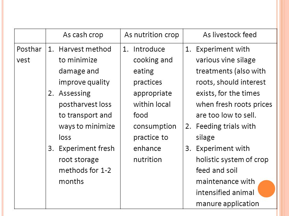 As cash cropAs nutrition cropAs livestock feed Posthar vest 1.Harvest method to minimize damage and improve quality 2.Assessing postharvest loss to tr