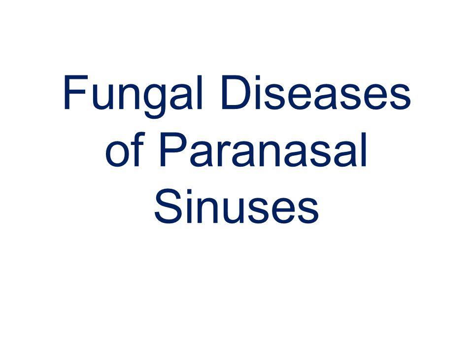 Fungal Diseases of Paranasal Sinuses