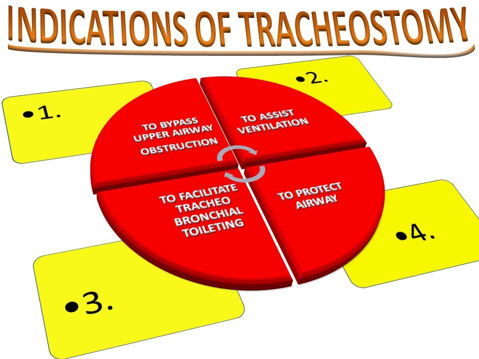 Infections Ac.Epiglottitis Ac. Laryngo- Tracheobronchitis Laryngeal – Diphtheria Ludwig's angina.
