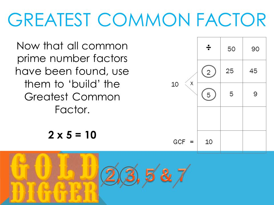 Now that all common prime number factors have been found, use them to 'build' the Greatest Common Factor.