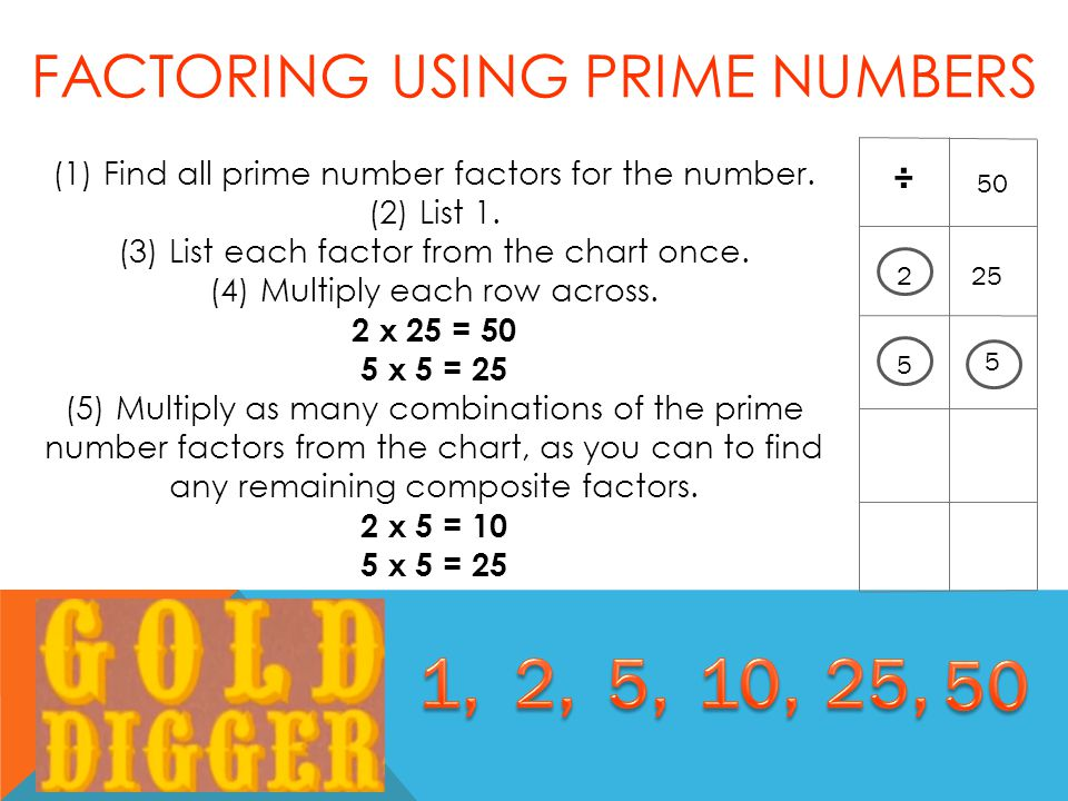 (1) Find all prime number factors for the number. (2) List 1.