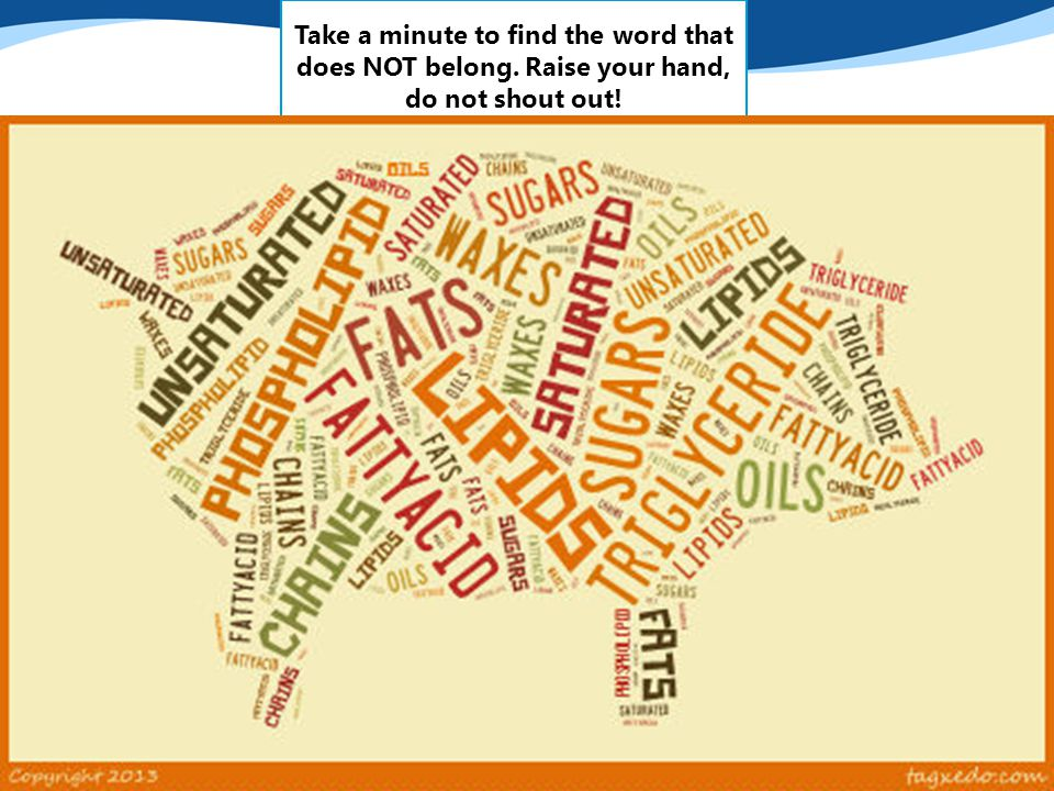 Take a minute to find the word that does NOT belong. Raise your hand, do not shout out!