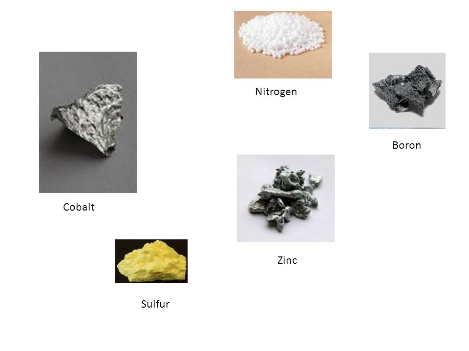 Elements A pure substance that cannot be broken down further- already in simplest form Cobalt Iron Nickel Zinc Nitrogen Copper Lead Sulfur Boron Silic