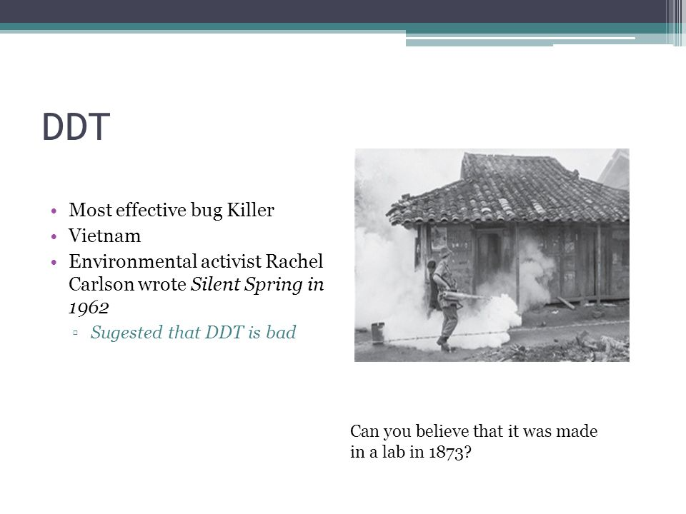DDT Most effective bug Killer Vietnam Environmental activist Rachel Carlson wrote Silent Spring in 1962 ▫Sugested that DDT is bad Can you believe that it was made in a lab in 1873
