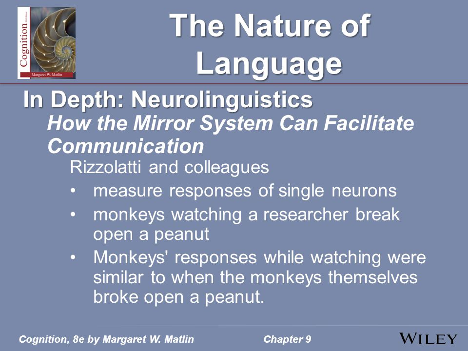 Cognition, 8e by Margaret W. MatlinChapter 9 The Nature of Language In Depth: Neurolinguistics How the Mirror System Can Facilitate Communication Rizz