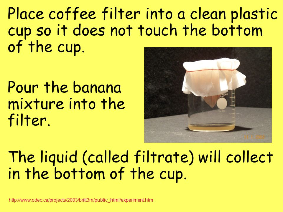 Place coffee filter into a clean plastic cup so it does not touch the bottom of the cup. Pour the banana mixture into the filter. The liquid (called f