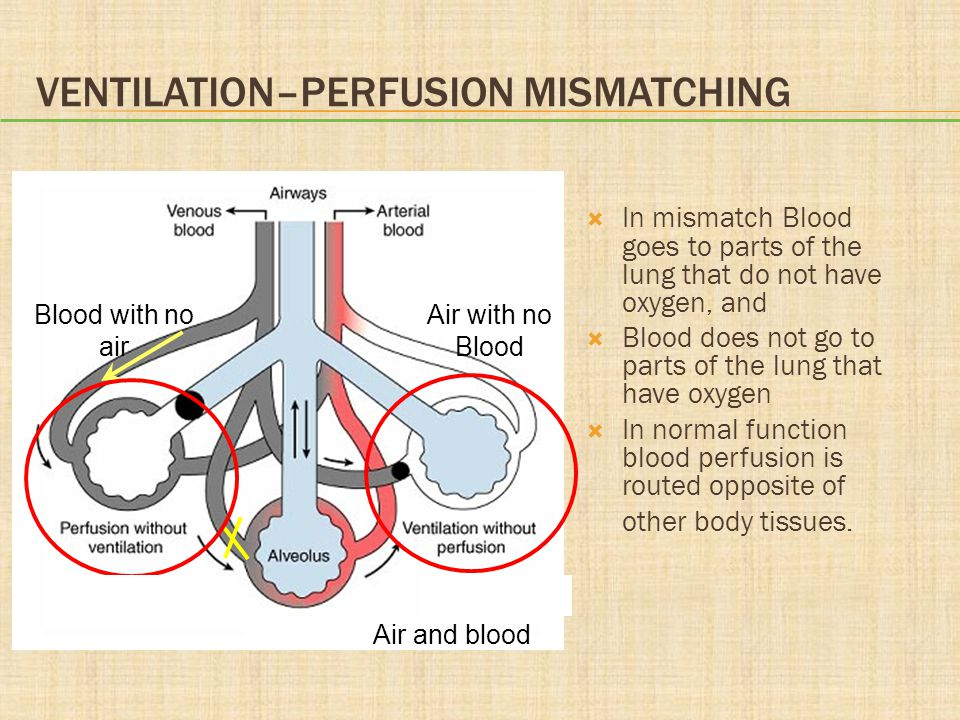 VENTILATION–PERFUSION MISMATCHING  In mismatch Blood goes to parts of the lung that do not have oxygen, and  Blood does not go to parts of the lung that have oxygen  In normal function blood perfusion is routed opposite of other body tissues.