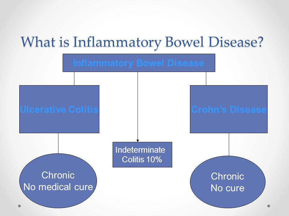 What is Inflammatory Bowel Disease? Ulcerative ColitisCrohn's Disease Chronic No medical cure Chronic No cure Inflammatory Bowel Disease Indeterminate