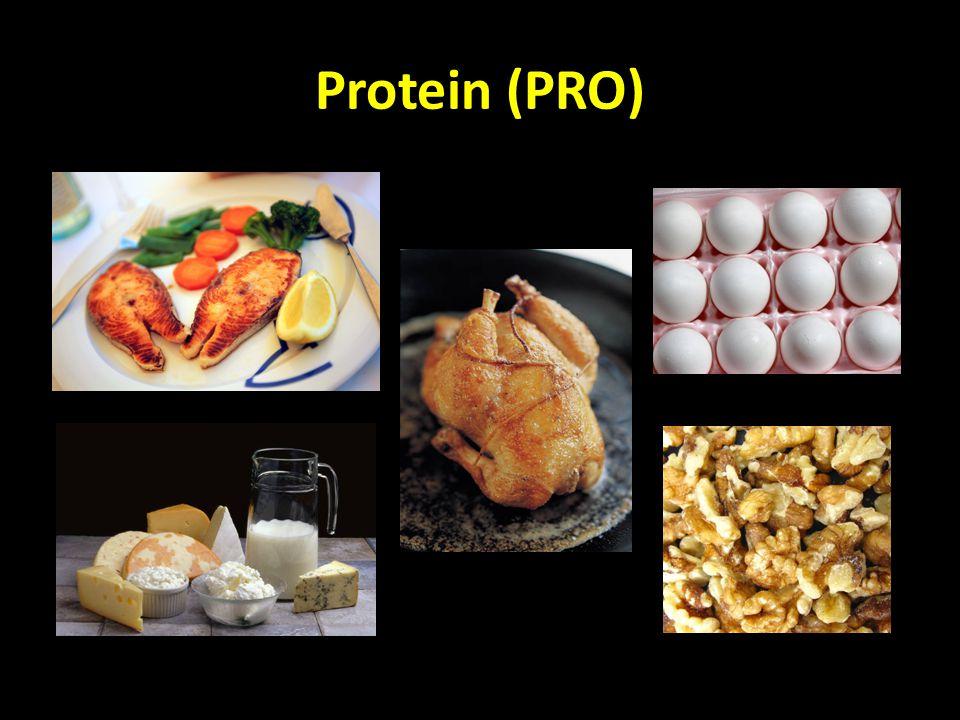 Protein (PRO)