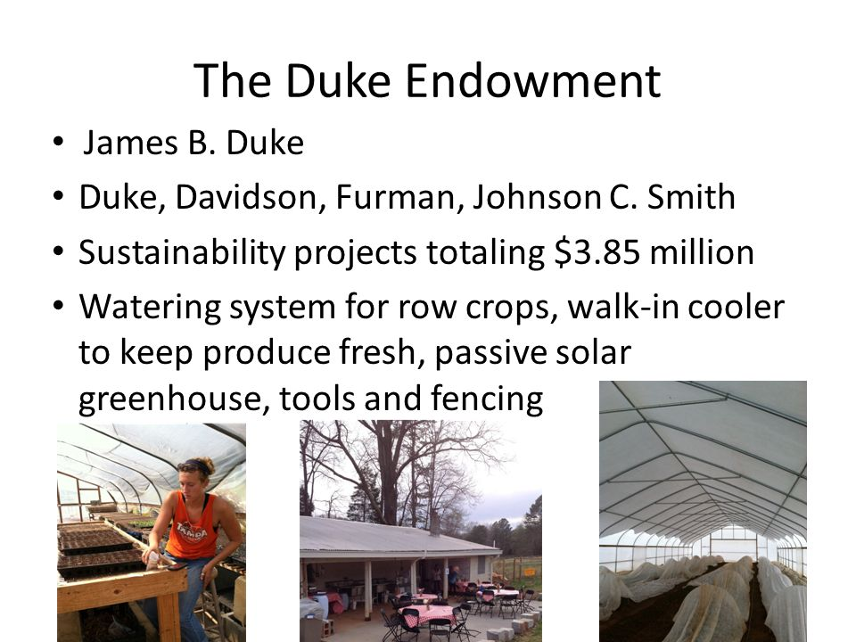 The Duke Endowment James B. Duke Duke, Davidson, Furman, Johnson C.