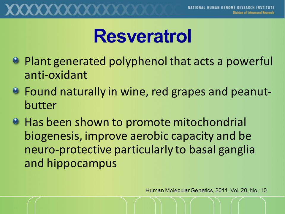 Resveratrol Plant generated polyphenol that acts a powerful anti-oxidant Found naturally in wine, red grapes and peanut- butter Has been shown to promote mitochondrial biogenesis, improve aerobic capacity and be neuro-protective particularly to basal ganglia and hippocampus Human Molecular Genetics, 2011, Vol.