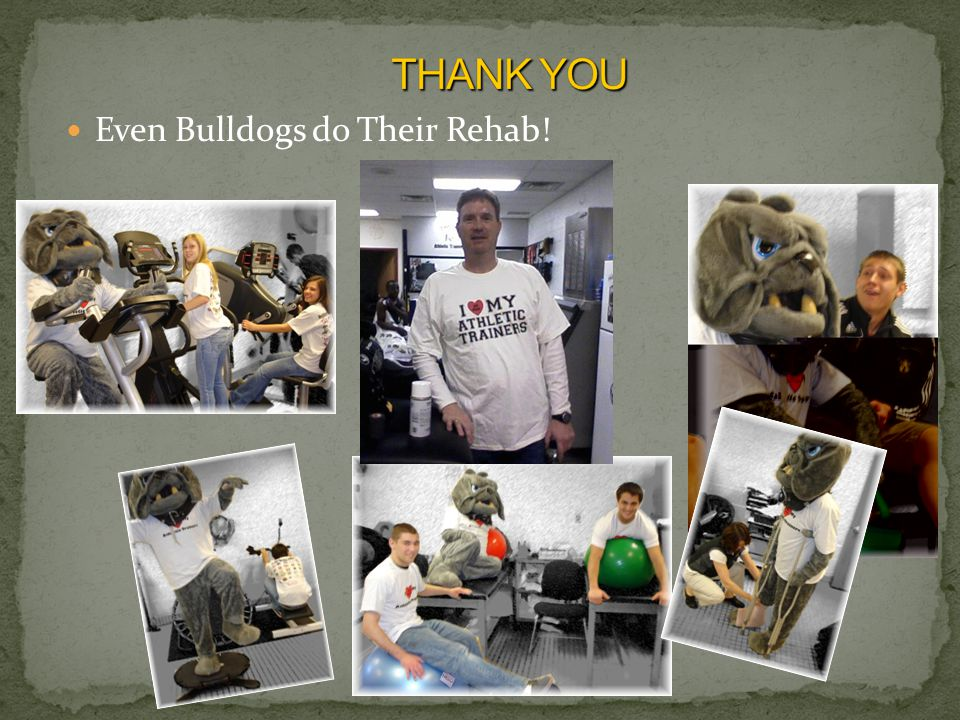 Even Bulldogs do Their Rehab!