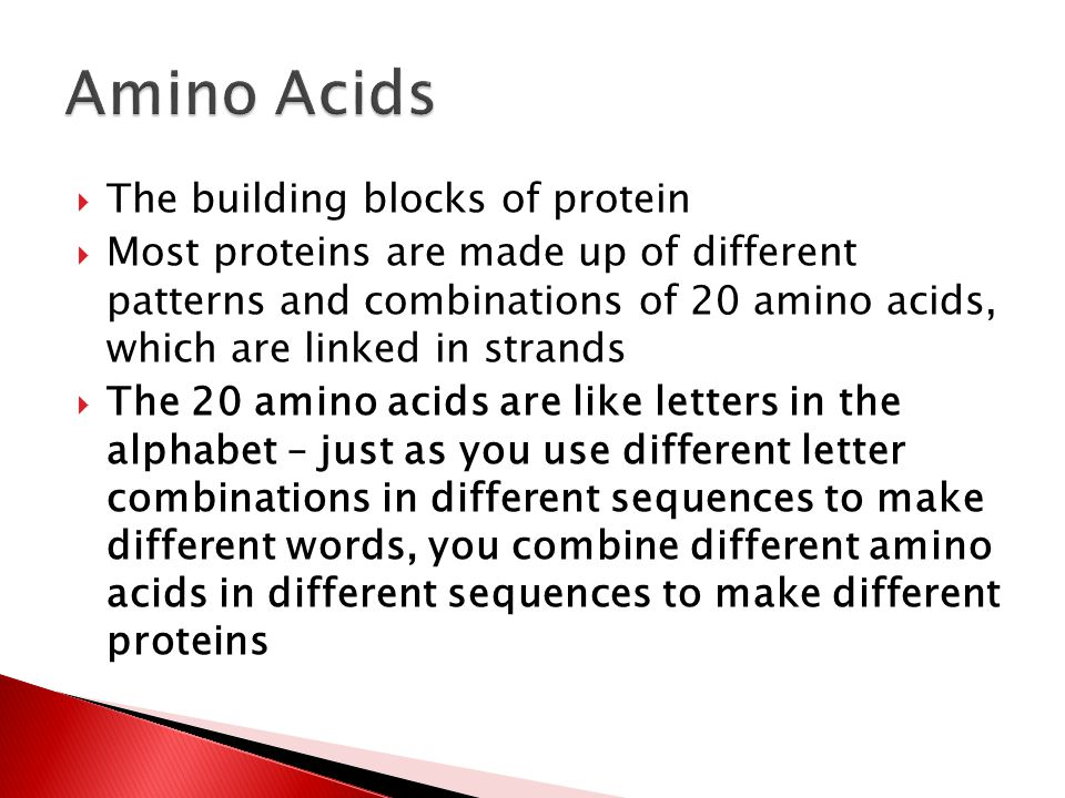  The building blocks of protein  Most proteins are made up of different patterns and combinations of 20 amino acids, which are linked in strands  The 20 amino acids are like letters in the alphabet – just as you use different letter combinations in different sequences to make different words, you combine different amino acids in different sequences to make different proteins