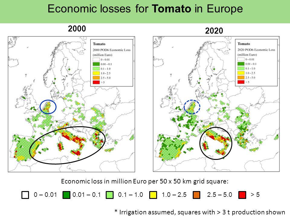 Economic losses for Tomato in Europe 2000 2020 Economic loss in million Euro per 50 x 50 km grid square: 0 – 0.010.01 – 0.10.1 – 1.01.0 – 2.52.5 – 5.0