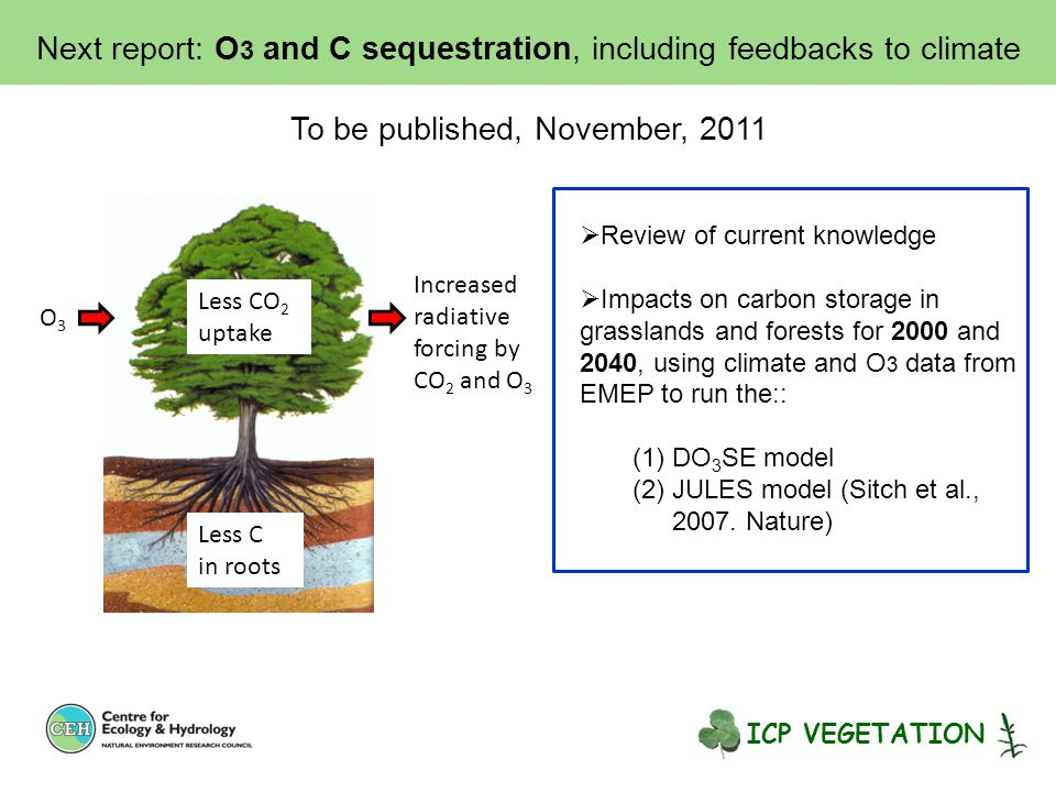Next report: O 3 and C sequestration, including feedbacks to climate To be published, November, 2011  Review of current knowledge  Impacts on carbon storage in grasslands and forests for 2000 and 2040, using climate and O 3 data from EMEP to run the:: (1)DO 3 SE model (2)JULES model (Sitch et al., 2007.
