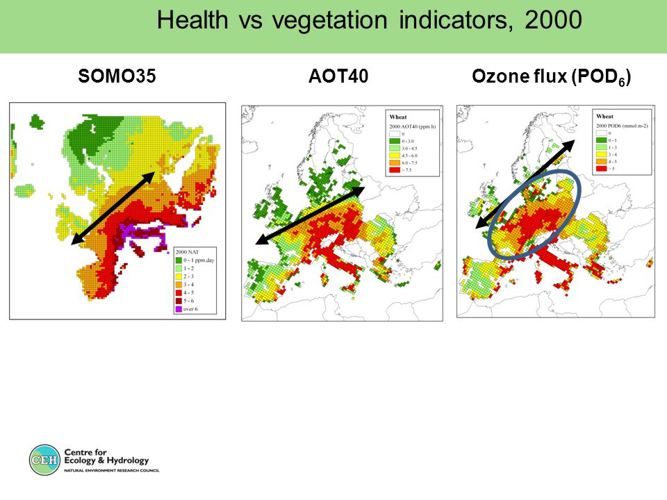 Ozone flux (POD 6 ) Health vs vegetation indicators, 2000 AOT40SOMO35