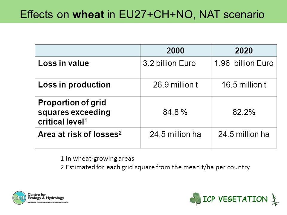 20002020 Loss in value3.2 billion Euro1.96 billion Euro Loss in production26.9 million t16.5 million t Proportion of grid squares exceeding critical level 1 84.8 %82.2% Area at risk of losses 2 24.5 million ha 1 In wheat-growing areas 2 Estimated for each grid square from the mean t/ha per country Effects on wheat in EU27+CH+NO, NAT scenario ICP VEGETATION