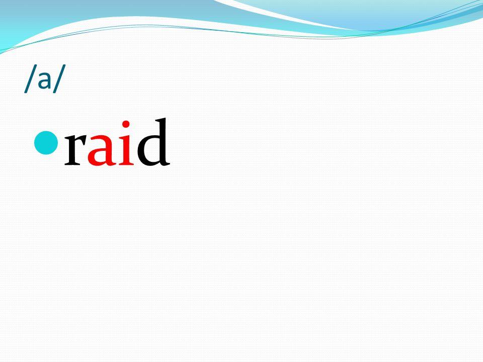 /a/ raid