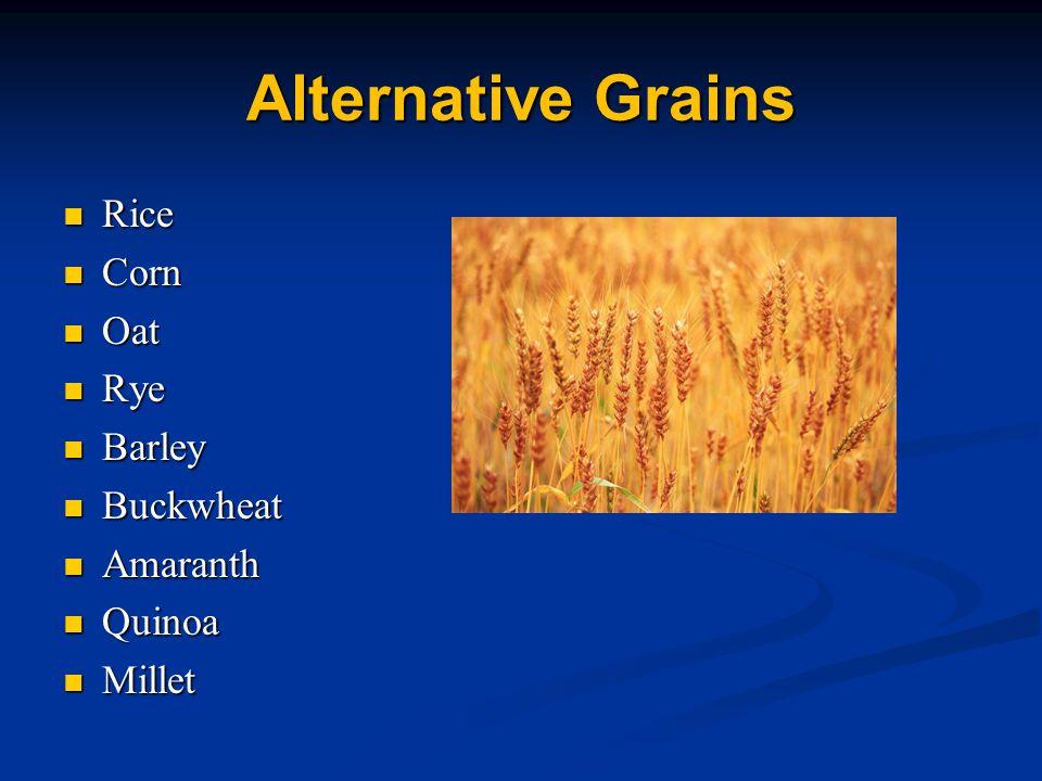 Alternative Grains Rice Rice Corn Corn Oat Oat Rye Rye Barley Barley Buckwheat Buckwheat Amaranth Amaranth Quinoa Quinoa Millet Millet