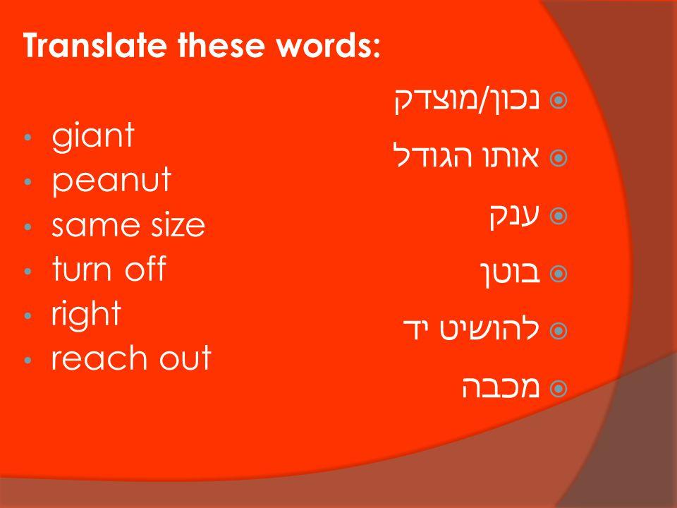 Translate these words: giant peanut same size turn off right reach out  נכון/מוצדק  אותו הגודל  ענק  בוטן  להושיט יד  מכבה