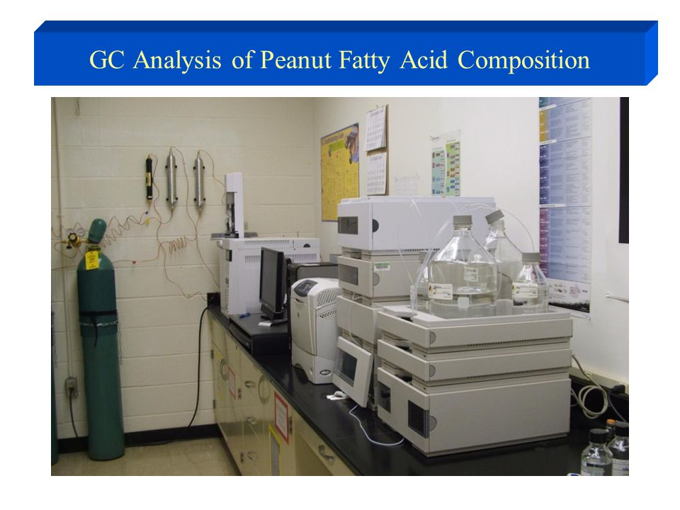 GC Analysis of Peanut Fatty Acid Composition