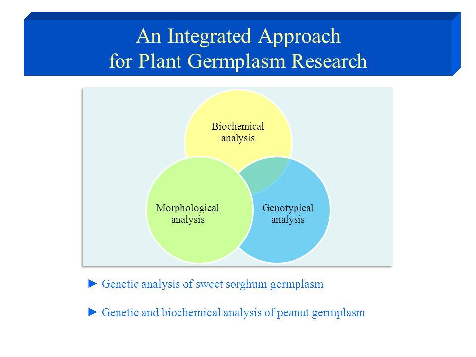 Sorghum Grain sorghum (Starch) Forage sorghum (Biomass) Sweet sorghum (Sugars) Sorghum as Feedstock for Bioethanol Production