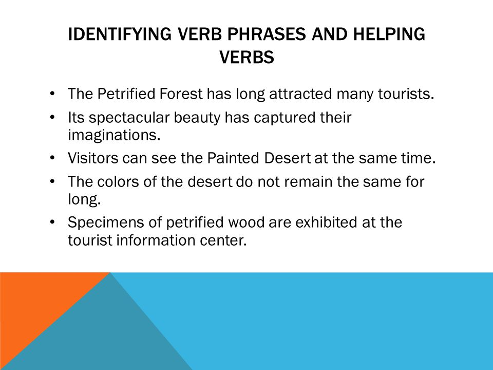 IDENTIFYING VERB PHRASES AND HELPING VERBS The Petrified Forest has long attracted many tourists. Its spectacular beauty has captured their imaginatio