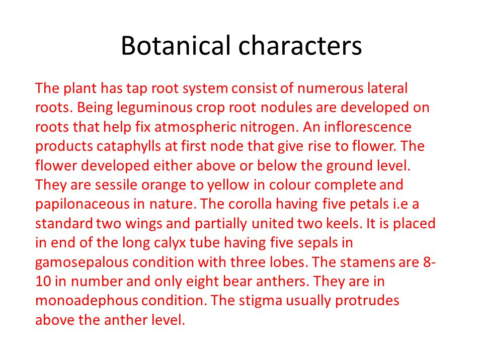 Botanical characters The plant has tap root system consist of numerous lateral roots.
