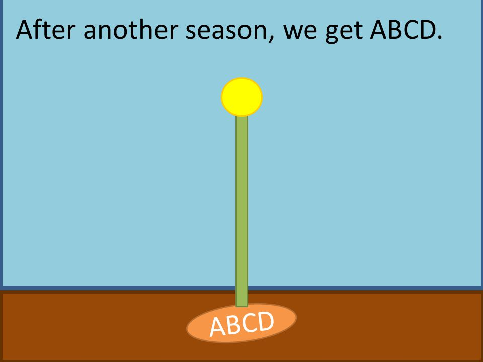 ABCD After another season, we get ABCD.